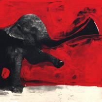 C'mon Tigre - Elephant remix
