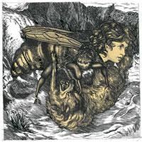 Calendula - Hiveminds - De Brevitate Vitae